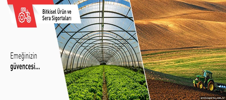 Devlet destekli bitkisel ürün sigortası